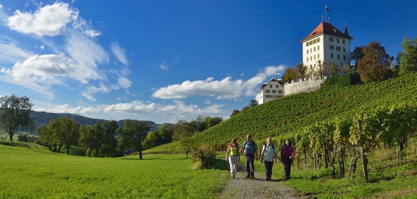 Castle_Heidegg_Seetal.jpg